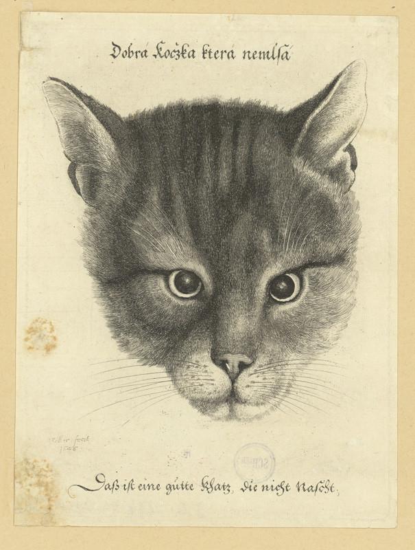Václav Hollar - Dobrá kočka, která nemlsá, 1646